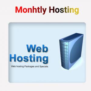 Monthly Hosting Plan